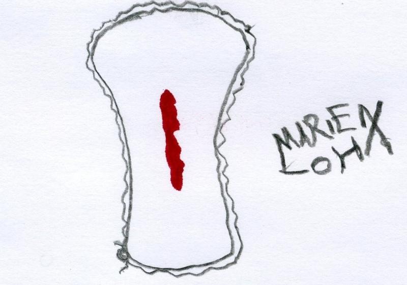 Marien Loha - Rätselbild 8