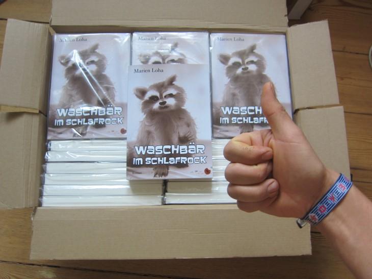 MarienLoha-Waschbaer_im_Schlafrock-Kiste